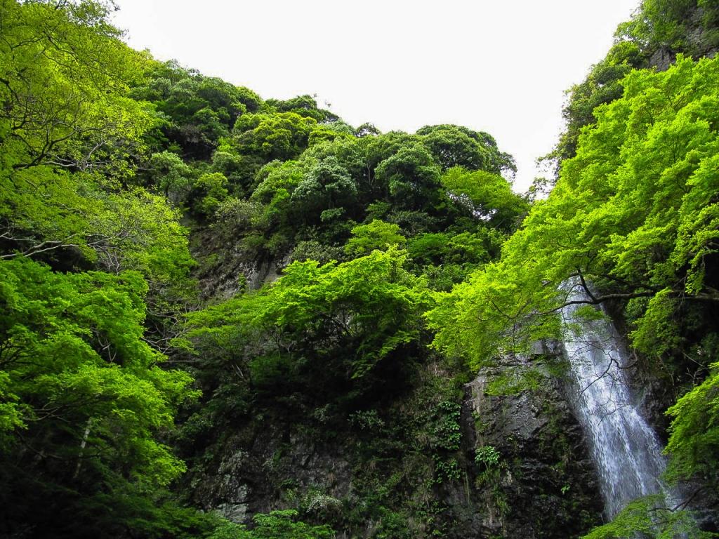 Der Wasserfall in Minō