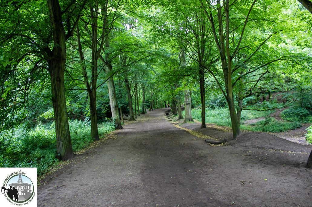 Hampstead Heath - 03