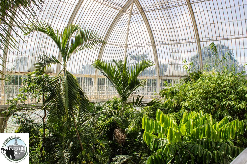 Kew Gardens - 06