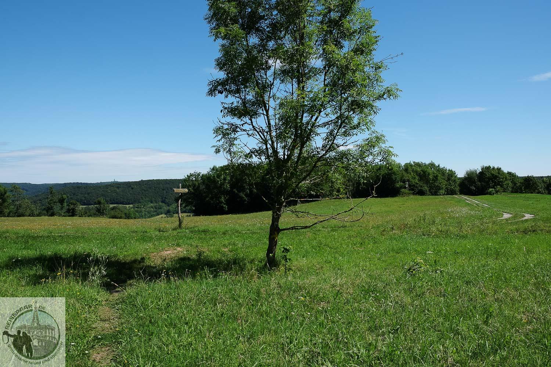 Wanderung-P5-Wanfried-001